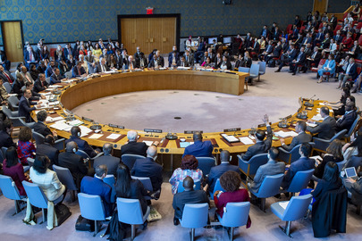 Security Council Adopts Resolution on Cessation of All Acts of Sexual Violence