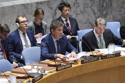 Security Council Considers International Residual Mechanism for Criminal Tribunals