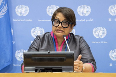 Member of UN Fact-Finding Mission on Myanmar Briefs Press