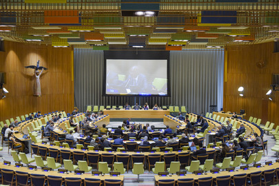 General Assembly Meets on Committee on Exercise of Inalienable Rights of Palestinian People