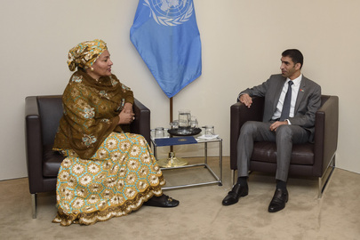 Deputy-Secretary-General Meets UAE Minister of Climate Change