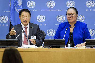 Press Briefing on Sustainable Energy and Small Island Developing States