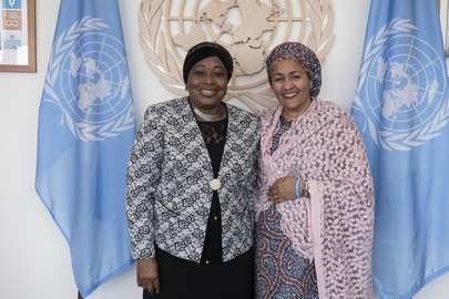 Deputy Secretary-General Meets Commissioner for Political Affairs of African Union