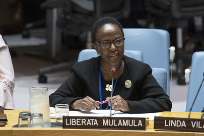 Security Council Considers Centrality of Preventative Diplomacy, Conflict Prevention and Resolution