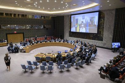 Security Council Consider Situation in Mali