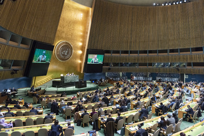 General Assembly Hears Reports of Third and Fifth Committees