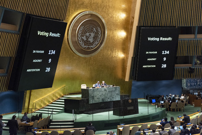 General Assembly Votes on Human Rights of Minorities in Myanmar