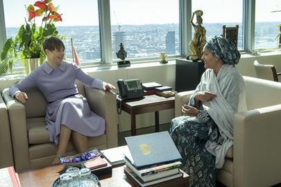 Deputy Secretary-General Meets President of Estonia