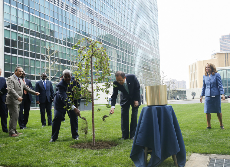 Tree-planting Ceremony Commemorating End of WWII and Founding of UN