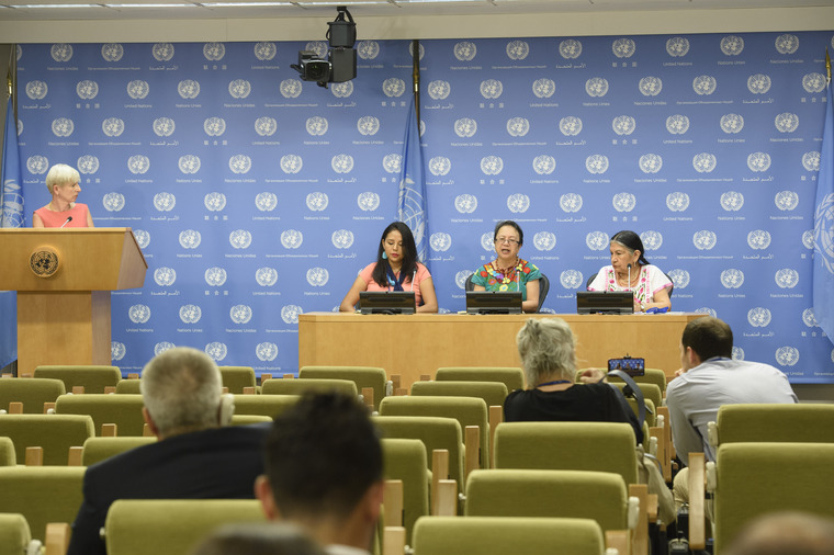 Press Briefing on Respect of Rights of Indigenous Peoples Related to SDGs