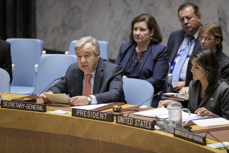 Security Council Meets on Maintenance of International Peace and Security