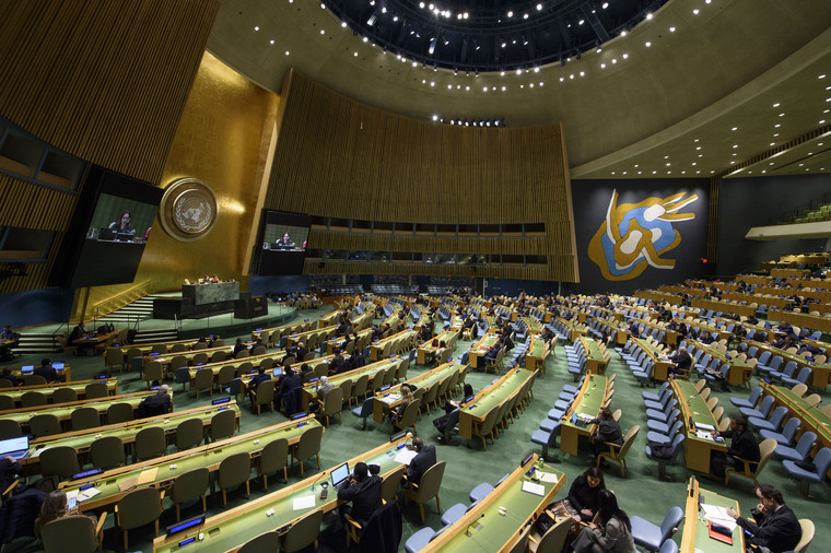 General Assembly Meets on Security Council Membership