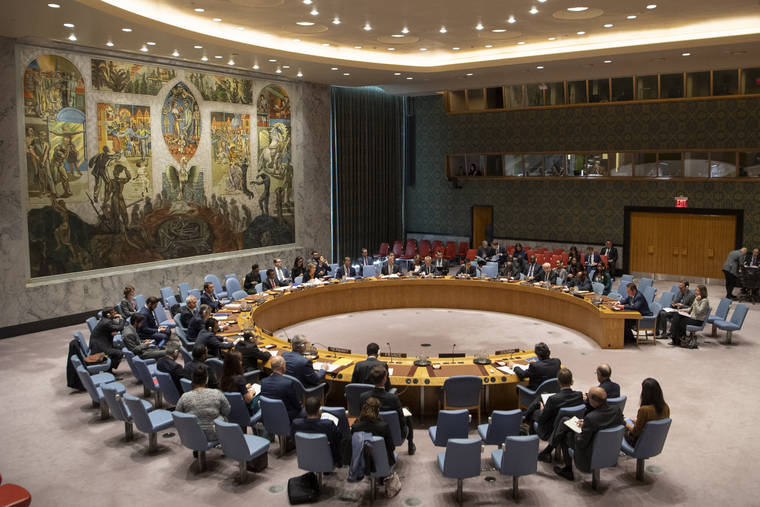 Security Council Considers Situation in Colombia