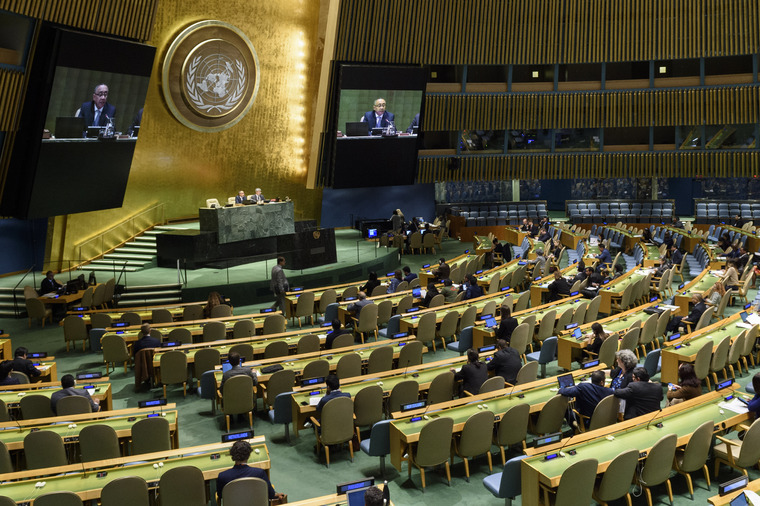 General Assembly Holds Plenary Meeting