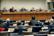 IIC Chairman Briefs Members of General Assembly on Its Findings 3.2102137