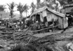 Coping with Disasters: Refugees and Displaced Persons in South-East Asia 2.4104114