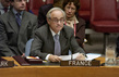 Head of Security Council Mission to Central Africa Briefs Security Council 4.2587395