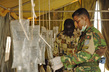 Bangladesh Army Contingent Medic Helps Fight Cholera Outbreak in Sudan 4.2918587
