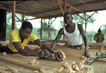 The Right to Work: Vocational Training in Sierra Leone 1.0