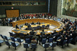 Security Council Meeting Considers Situation in Sudan 0.7195046