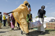 Internally Displaced Persons Receive Emergency Food Aid 7.7540674