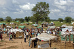Sudanese Displaced by Floodwaters 4.4402685