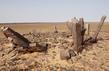 Western Sahara 4.8727036