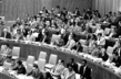 Ad Hoc Committee Adopts Draft Declaration and Action Programme 1.0