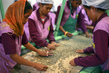 Coffee Handlers at Cooperative Café Timor Sifting Coffee Beans 4.3437653