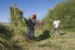 Mongolian Farmers Work in Fruit Seeds Project 17.07395