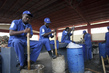 "Haiti ""Cash for Work"" Helps Produce Alternate Source of Cooking Fuel 2.6113498"
