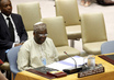 UNAMID Special Representative Briefs Security Council 1.4539