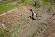 Contaminated River Source of Cholera in Haiti 9.907631