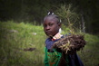 Haitian Students Breathe New Life into Depleted Pine Forest 7.7191315