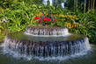Singapore Botanic Gardens 8.091651
