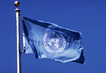 United Nations Flag 1.0