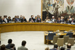 Security Council Votes on Draft Resolution on Syria 13.166906