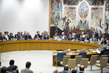 Security Council Votes on Draft Resolution on Syria 12.770229