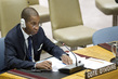 Security Council Adopts Resolution on Mali 1.276817