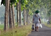 "United Nations Forum on Forests Photo Competition: ""Walking Alone"" 14.547665"