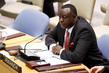 Security Council Considers Situation in Côte d'Ivoire 1.2087392