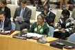 Security Council Discusses Situation in Central African Republic 4.2610555