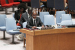 Security Council Discusses Situation in Côte d'Ivoire 0.40333402