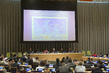 Assembly Marks International Day against Nuclear Tests 2.5818174