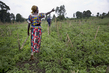 MONUSCO clears Unexploded Ordnance (UXO) in Eastern DRC 7.4612484