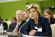 Swedish Children and Elderly Minister Addresses High-level Meeting on Disability and Development 0.79491603