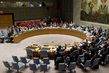 Security Council Extends ISAF Authorization until December 2014 0.6629295