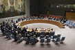 Security Council Extends MINUSTAH Mandate for One Year 0.55315137