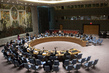 Security Council Extends UNISFA Mandate until May 2014 4.265603