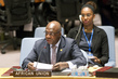 Security Council Authorizes African Union Mission in Central African Republic 0.05943192